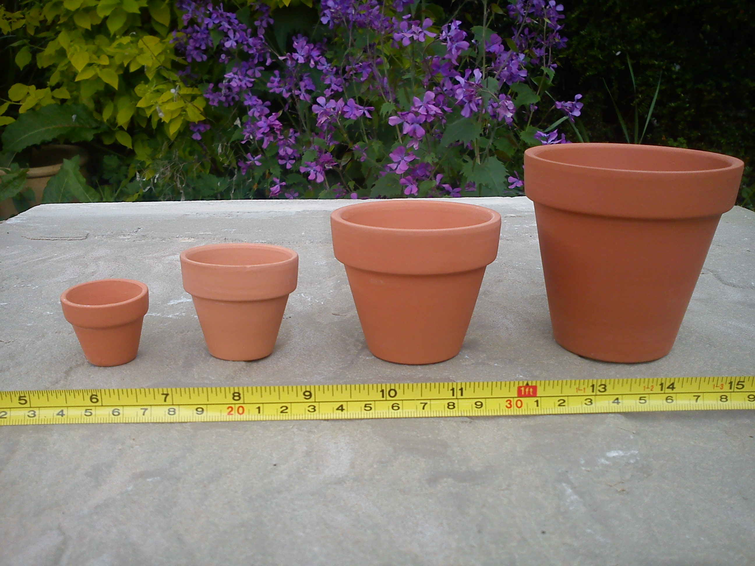 Mini plant pots terracotta world for Small clay flower pots