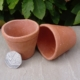 Small cup shaped like plant pots