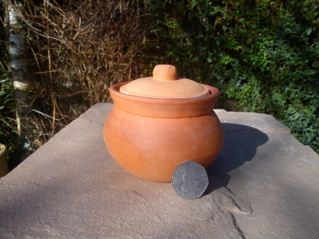 Curd Pot with Lid