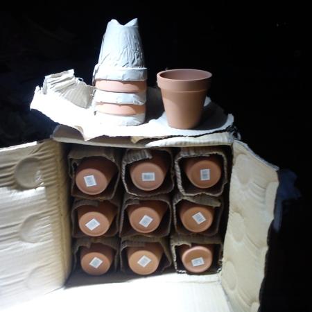 Standard Plant Pots in Bulk