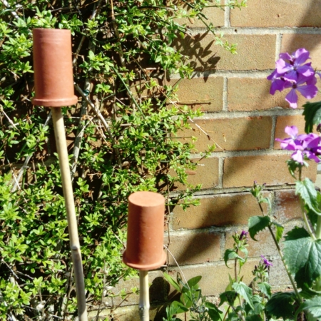 Terracotta Cane Toppers